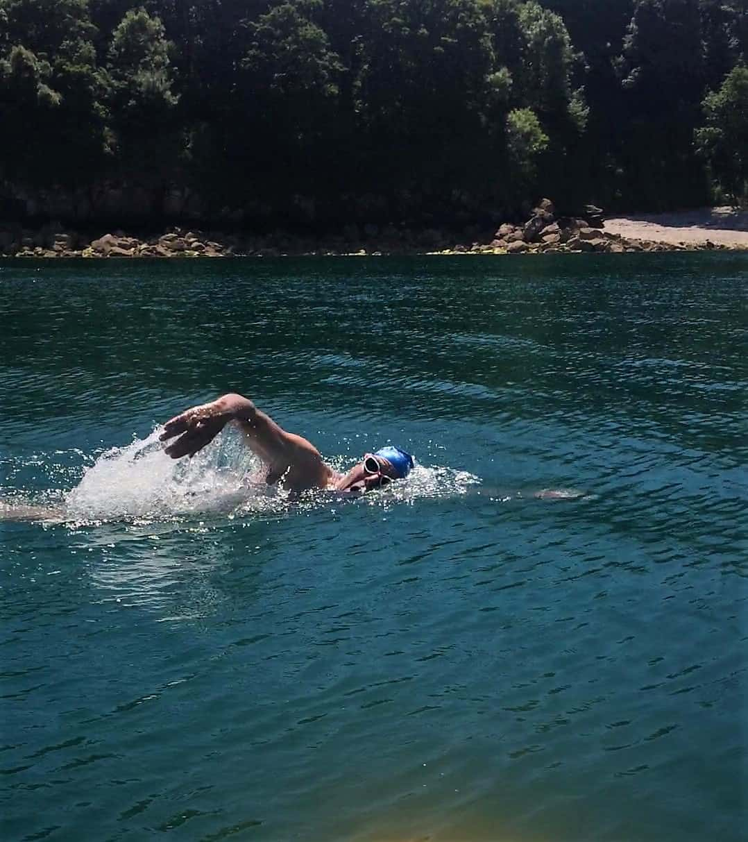 professor andy wolf swimming